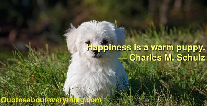 Happiness is a warm puppy.      ― Charles M. Schulz